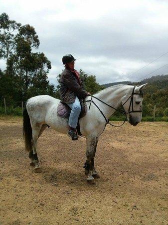 Quinta do Riacho: Me on Apollo :)