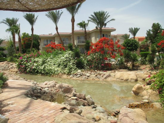 Radisson Blu Resort, Sharm El Sheikh: Lake