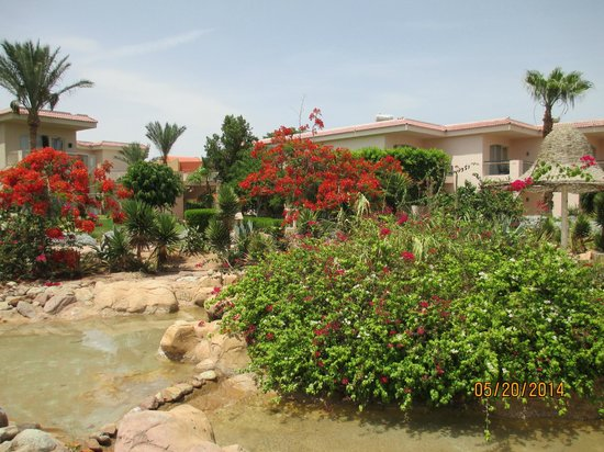 Radisson Blu Resort, Sharm El Sheikh: Room View