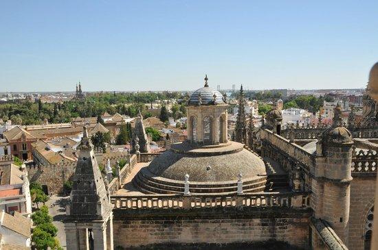 Torre Giralda : Vue de la tour Giralda