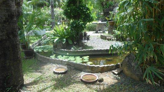 Deevana Patong Resort & Spa: Hotel Gardens