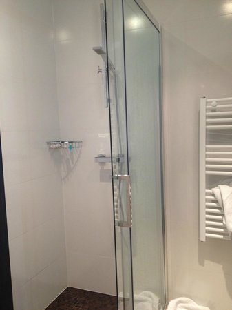 Hotel Albert 1er : Good shower