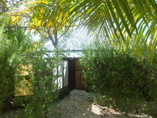 Tevahine Dream : Bungalow jardin