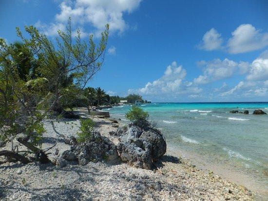Tevahine Dream : plage