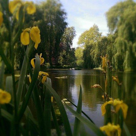 Gooderstone Water Gardens & Nature Trails: Beautiful Gooderstone