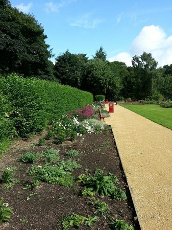 Middleton Park: The Rose Garden