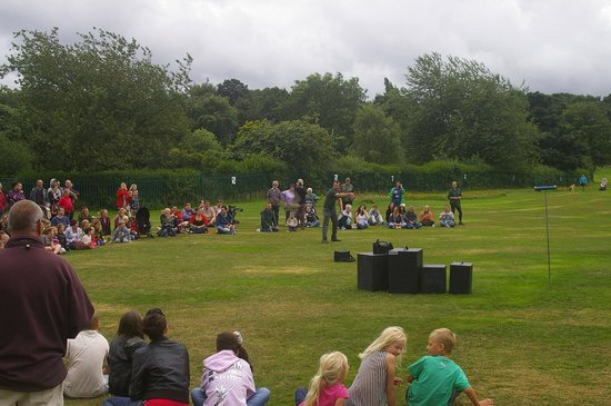 Middleton Park: Bird of Prey event 2013
