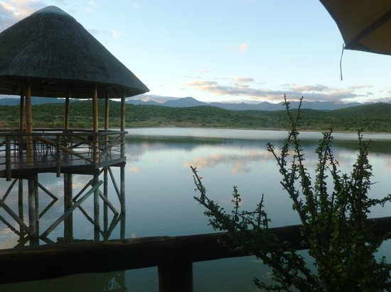 Buffelsdrift Game Lodge Restaurant: Lovely views from the outdoor seating area