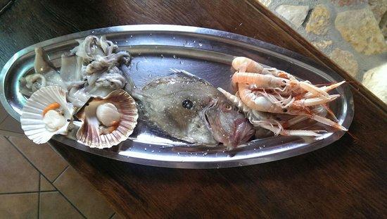 Gradina Grill: Un bel San Pietro con contorno di scampi , calamari e cappe sante