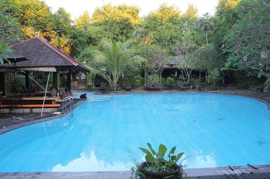 Dusun Jogja Village Inn: Pool