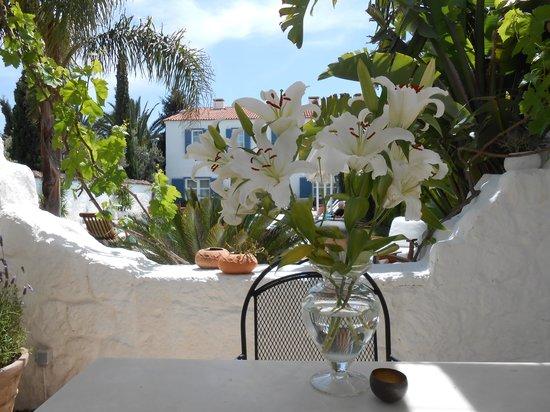 BeyEvi Hotel: The beautiful garden and pool