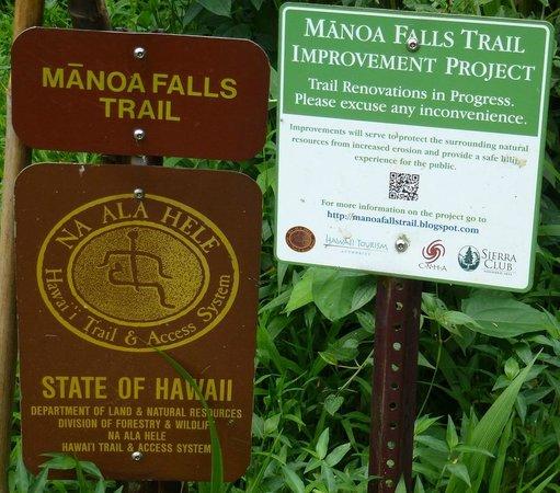 Manoa Falls: Указатель к водопаду