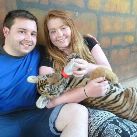 Tiger Temple Thailand Tour : Feeding