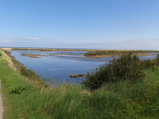 RSPB Titchwell Marsh: View over the pools