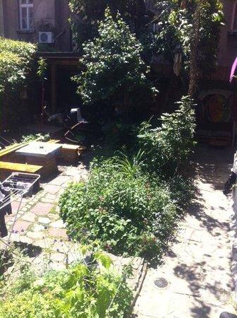 Art Hostel: Garden view