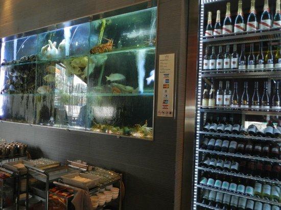 Jumbo Seafood : fish tanks