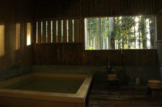 "Lodge Yaedake Sanso : the ""forest side"" bath"