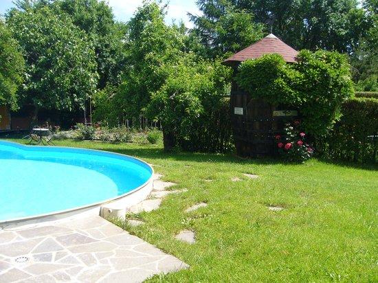 Gasthof WASTL Albergo: Schwimmbad mit Liegewiese