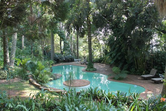 Highgrove House: Pool set in lush gardens