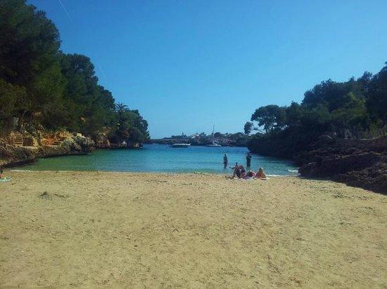 Hotel Cala Ferrera : beach
