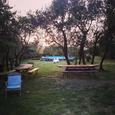 Podere Valdibotte : gardens