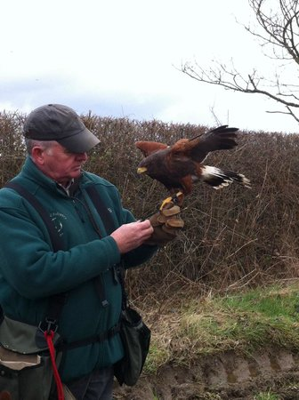 Battlefield Falconry Centre: Just starting out on the walk.