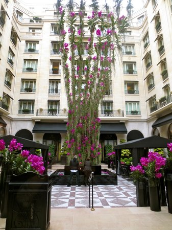 Four Seasons Hotel George V Paris: Outdoor patio with climbing orchids