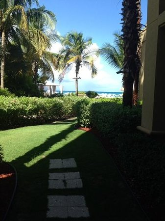 The Ritz-Carlton, Grand Cayman: outside our room... amazing