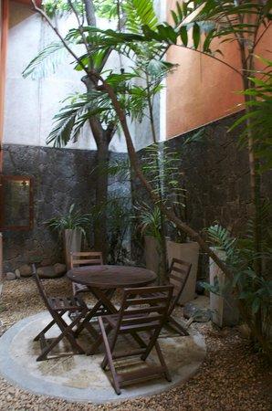 5th Lane House: garden