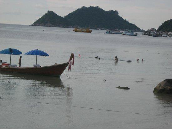 AC Resort: KohTao_134