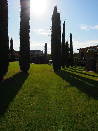 Arcs De Monells: Part of the hotel grounds