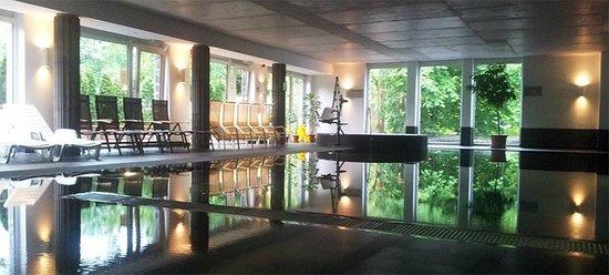 Hotel Bonvino Wine and Spa Badacsony: pool area