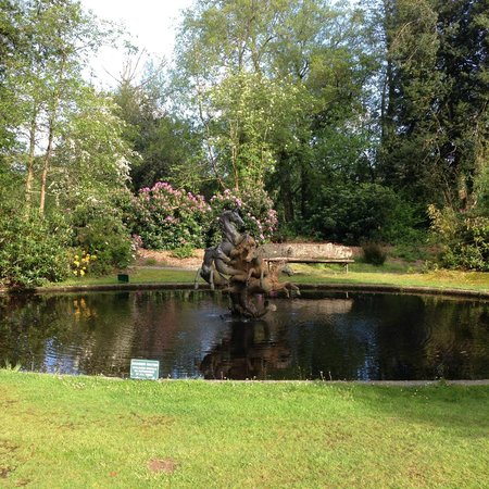 Bovey Castle Hotel: Bovey Castle, Lakes
