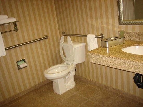 Holiday Inn Express Albany: 洗面所