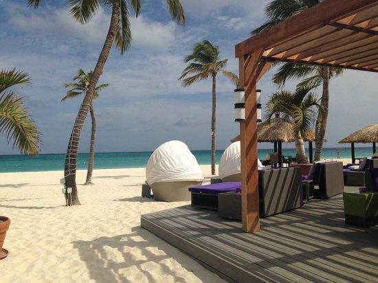 Bucuti & Tara Beach Resort Aruba: Our view from breakfast each morning