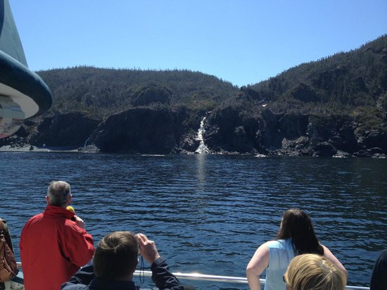 BonTours Boat Tours: Tour Guide Wayne, who provided a very informative and entertaining overview of the area. He is a