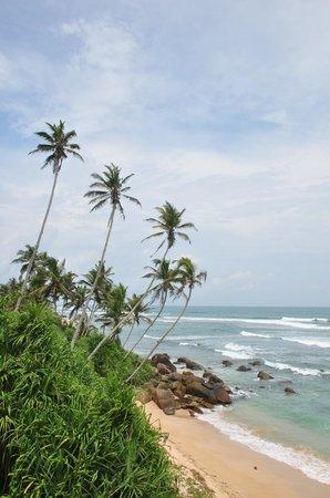 Beach Inns: the beach