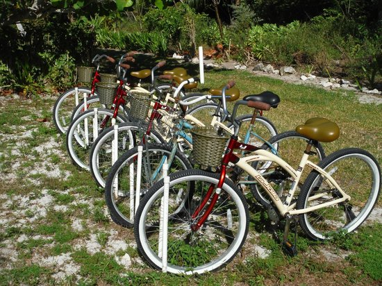 Seascape Inn, Andros : All bikes in good working order