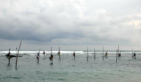 Beach Inns: the fisherman