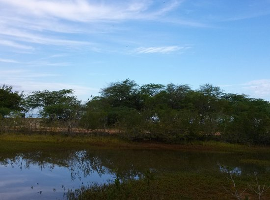 Combate Beach Resort: Lagoons at the Wildlife Refuge, Combate Beach