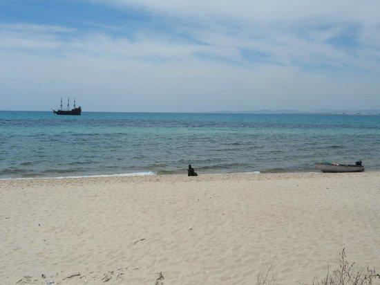 Residence la Paix : la plage à coté (5mn à pied)