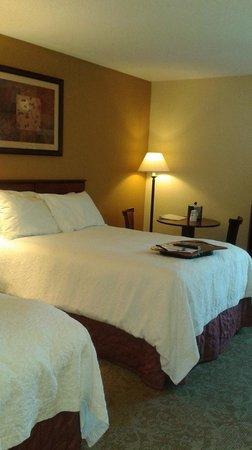 Hampton Inn by Hilton Kuttawa/Eddyville: HAMPTONKUTTAWA