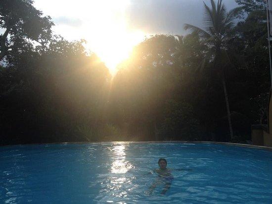 Ayung Resort Ubud: Infinity pool