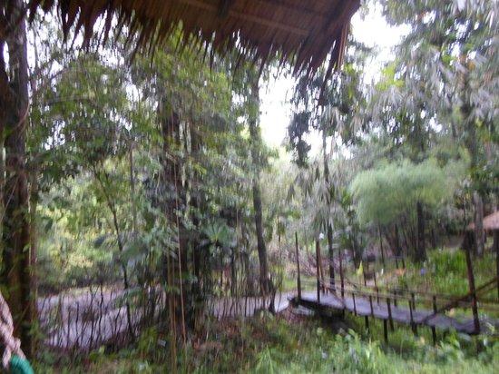The Artist's Resort Koh Chang: Blick von der Veranda
