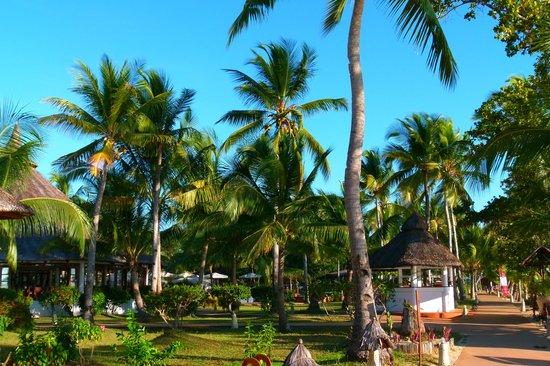 VOI Amarina resort: giradino del resort
