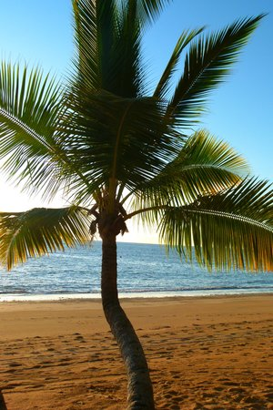 VOI Amarina resort: spiaggia del resort