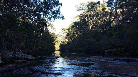 Royal National Park: Karloo brook