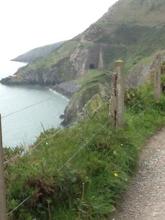 The Bray to Greystones Cliff Walk: Cliffside walk