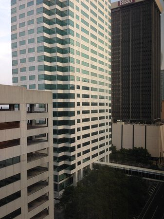 Hilton Tampa Downtown: 14th Floor View