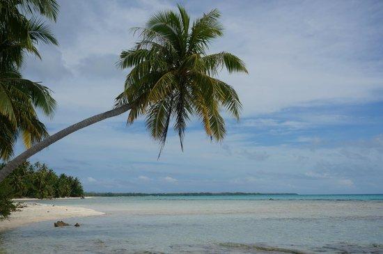 Ile aux Recifs: l'ile aux récifsl'ile aux récifs